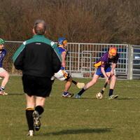 054-Roscommon Gaels 223