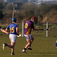 062-Roscommon Gaels 246
