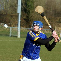 114-Roscommon Gaels 421