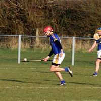 123-Roscommon Gaels 471