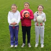 044-Shannon Gaels V Ballymchugh 001