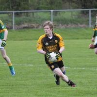 094-Shannon Gaels V Ballymchugh 227
