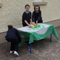 017-3rd Green Flag for Curravagh National School 059