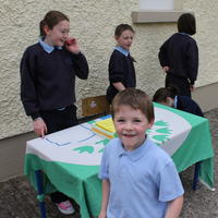020-3rd Green Flag for Curravagh National School 064