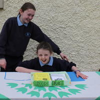 023-3rd Green Flag for Curravagh National School 068