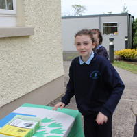 027-3rd Green Flag for Curravagh National School 074