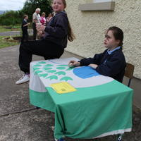 151-3rd Green Flag for Curravagh National School 245