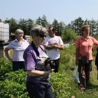 14-Community Garden on 20-07-2013 017