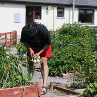 15-Community Garden on 20-07-2013 018