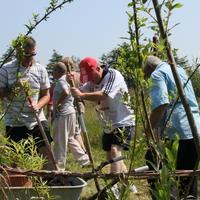 26-Community Garden on 20-07-2013 029