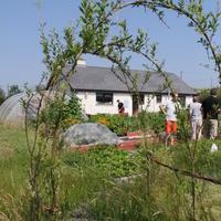 27-Community Garden on 20-07-2013 030