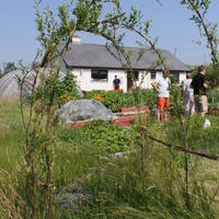 28-Community Garden on 20-07-2013 031