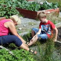 45-Community Garden on 20-07-2013 049
