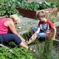 46-Community Garden on 20-07-2013 050