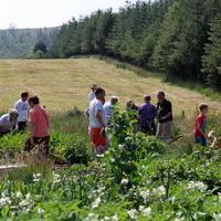 54-Community Garden on 20-07-2013 062