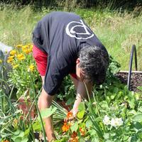 56-Community Garden on 20-07-2013 064