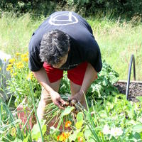 60-Community Garden on 20-07-2013 066