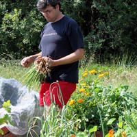 62-Community Garden on 20-07-2013 069