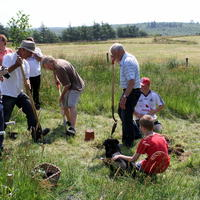 64-Community Garden on 20-07-2013 071
