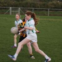106-01-04-2014 Girls U12 Shannon Gaels V Drumlane 473