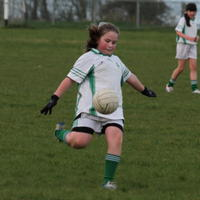 117-01-04-2014 Girls U12 Shannon Gaels V Drumlane 526
