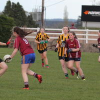 011-23-04-2014 Girls U16 V Belturbet 042
