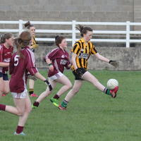 012-23-04-2014 Girls U16 V Belturbet 043