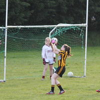 045-23-04-2014 Girls U16 V Belturbet 195