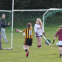 046-23-04-2014 Girls U16 V Belturbet 197