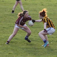 047-23-04-2014 Girls U16 V Belturbet 207