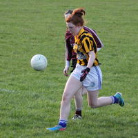 050-23-04-2014 Girls U16 V Belturbet 210