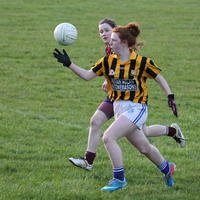051-23-04-2014 Girls U16 V Belturbet 211