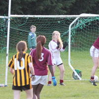052-23-04-2014 Girls U16 V Belturbet 213