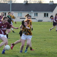054-23-04-2014 Girls U16 V Belturbet 219