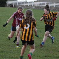 059-23-04-2014 Girls U16 V Belturbet 242