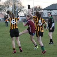 064-23-04-2014 Girls U16 V Belturbet 253
