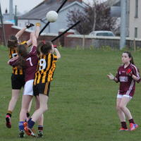 075-23-04-2014 Girls U16 V Belturbet 299