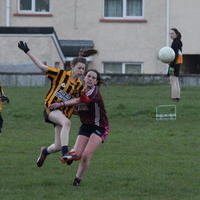 089-23-04-2014 Girls U16 V Belturbet 354
