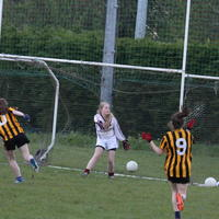 094-23-04-2014 Girls U16 V Belturbet 359