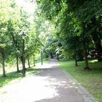 040-IMG_0065