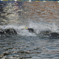 069-29-09-2014 World Championships in Canoe Polo 084