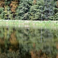 05-17-09-2014  Thury Harcourt  Normandie 005