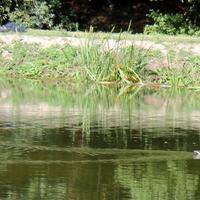 07-17-09-2014  Thury Harcourt  Normandie 007