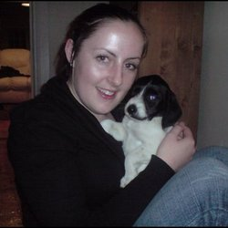 Lost dog on 21 Mar 2009 in Bray, Co Wicklow. small black and white female dog,is a bit bigger now than in photo,went missing from my back garden in bray, co wicklow.answers to sophie. she is microchipped. Reward given if returned!