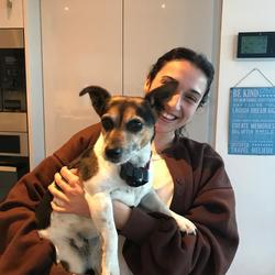 Lost dog on 23 Oct 2019 in Barnacullia, Sandyford, Dublin 18. PEPSI. Lost in Barnacullia, Sandyford Dublin 18. Last seen at 18:30. Shy and inquisitive Jack Russel. Very friendly but may be too nervous to approach you.