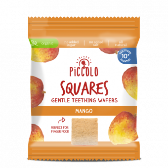 Product image for Squares Mango