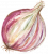 Organic Garlic icon image
