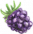 Organic Blackberries icon image
