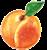 Organic Apricots icon image