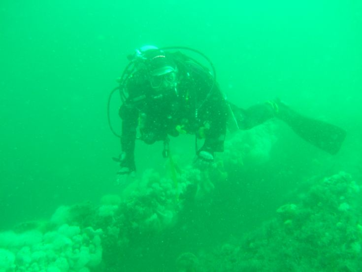 Diver on wreck
